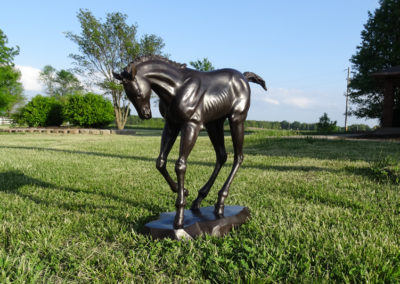 """Thoroughbred Bronze Foal """"The Race is On"""""""