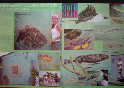 Conch Color Florida Keys News Paper