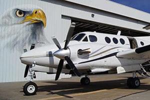Susan's giant eagle portrait at SGF Airport