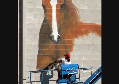 Susan Painting a Giant Mural of Horses at Campbell 16 in Springfield, MO
