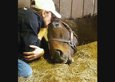 Susan's Racehorse 2