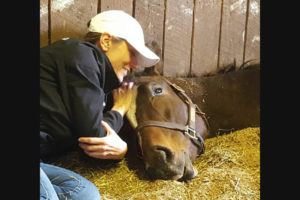 Susan's Racehorse